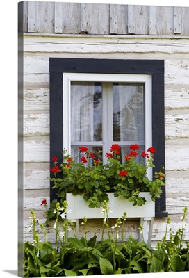 Log Home And Flower Box In The Window; Iron Hill, Quebec, Canada