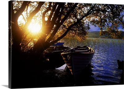 Lough Arrow, County Sligo, Ireland, Lake Near Ballinafad