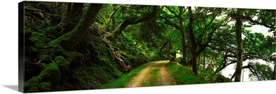 Lough Beagh, Glenveagh, County Donegal, Ireland