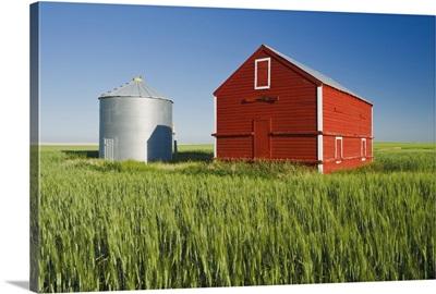 Metal Grain Bin And Wooden Grain Bin In Wheat Field, Sceptre, Saskatchewan, Canada