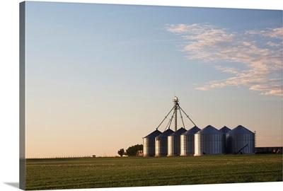Metal grain bins reflecting sunrise in an early green grain field, Alberta, Canada