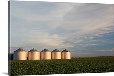 Metal grain bins reflecting sunrise with clouds and blue sky, Alberta, Canada