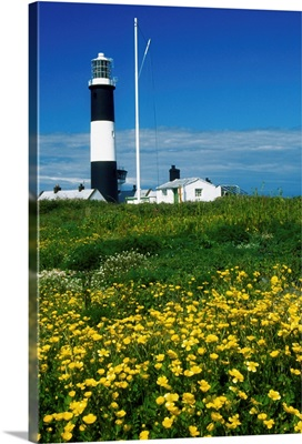 Mew Island, County Down, Ireland; Lighthouse