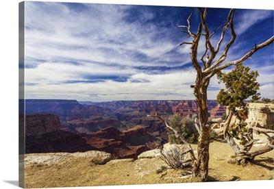 Moran Point At The Grand Canyon, Arizona, United States Of America