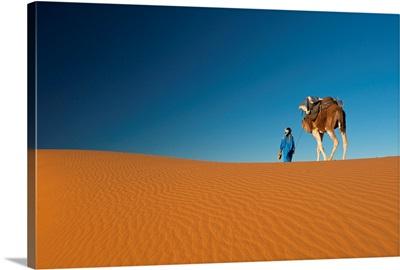 Morocco, Berber leading camel across sand dune near Merzouga in Sahara Desert