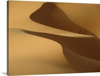 Morocco, Detail of sand dunes at dawn in Erg Chebbi area, Sahara Desert near Merzouga