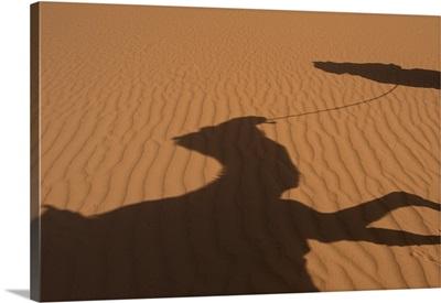 Morocco, Sahara Desert, Shadow of Berber 'Blue man' leading camel across sand dunes