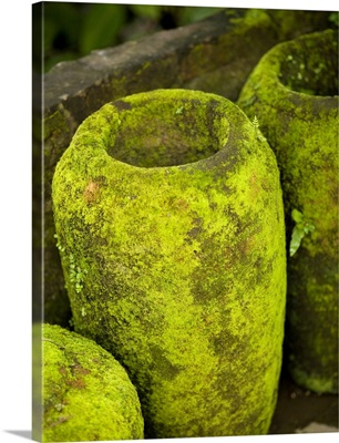 Moss Covered Urns
