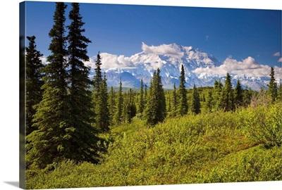 Mt McKinley and the Alaska Range as seen from inside Denali National Park Alaska summer