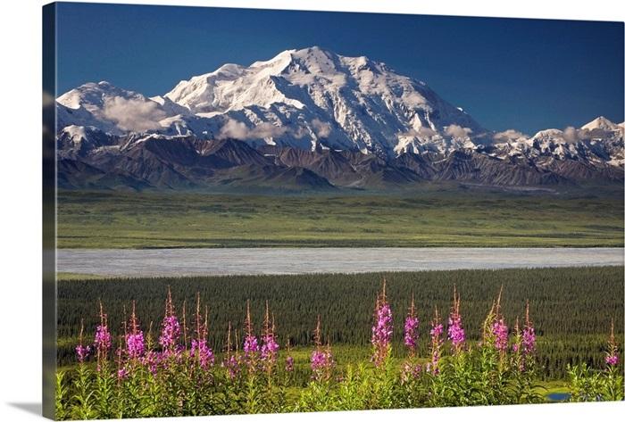 Mount McKinley Denali in Denali National Park in Alaska Photo Print
