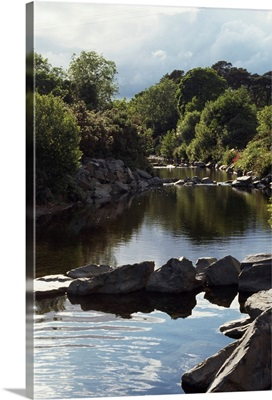 Newcastle, Shimna River, Co Down, Ireland, Trees Along A River