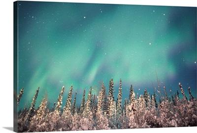 Northern Lights, Dempster Highway, Yukon