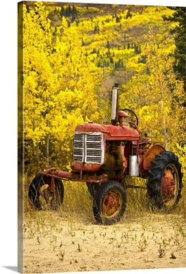 Old Farm Tractor
