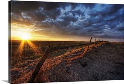 Old Fence In Field, Namao, Alberta, Canada