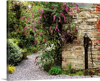 Old Water Pump, Ram House Garden, Co Wexford, Ireland