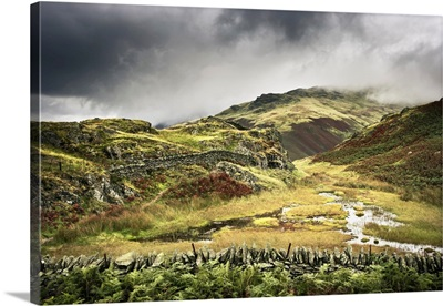 Overview Of Moorland, Alcock Tarn, Grasmere, Lake District, Cumbria, England