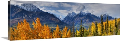 Panoramic View Of The Fall Foliage And Snowcapped Chugach Mountains, Alaska