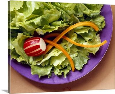 Prepared salad of Iceberg lettuce, radish and Julienne cut carrots on a purple plate