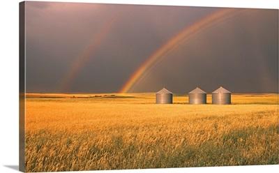 Rainbow Over Wheat Field, Alberta, Canada