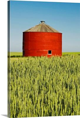 Red Grain Bin In Wheat Field, Sceptre, Saskatchewan, Canada