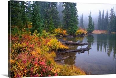 Reflection On Lake In Autumn, Mount Rainier National Park, Washington, USA