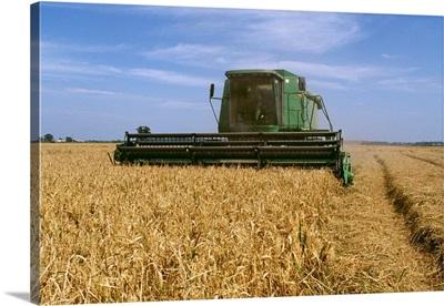Rice harvest, Arkansas