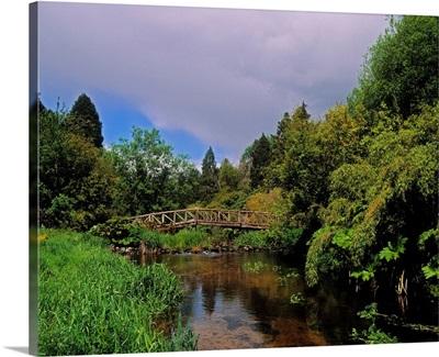 River Awbeg, Annesgrove, Castletownroche, Co Cork, Ireland; Bridge Over A River