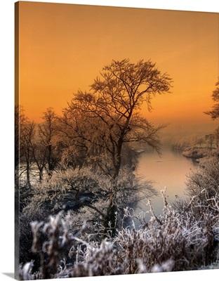 River Lagan, Lagan Meadows, County Antrim, Belfast, Ireland