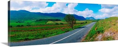 Road From Westport To Leenane, Co Mayo, Ireland