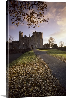 Road Leading To Kilkea Castle At Sundown, County Kildare, Ireland