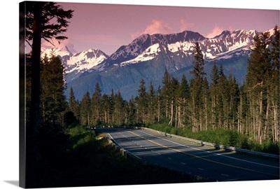 Road passing through Alaskan wilderness