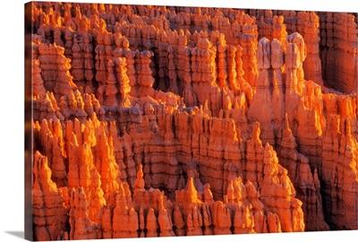 Rocky Canyon, Utah, USA