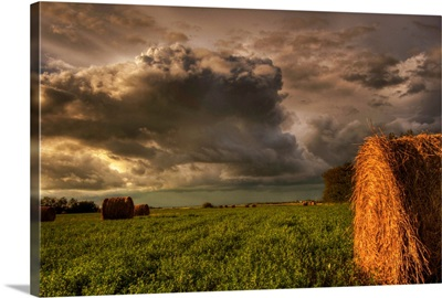 Rolled Hay Bales Under Storm Clouds, Alberta, Canada