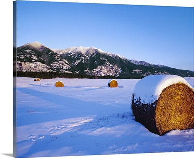 Round hay rolls in a snow covered field