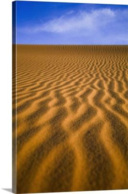 Sahara Desert, Morocco, Africa