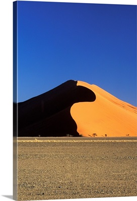 Sand Dune And Field