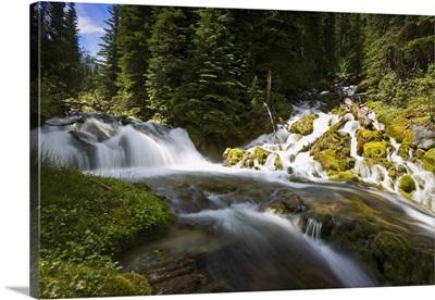 Scenic View Of A Stream
