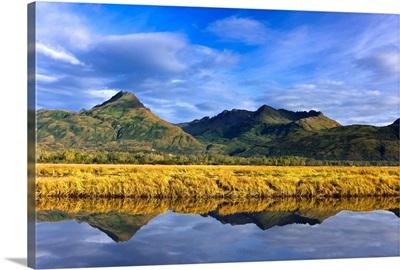 Scenic view of tidal slough along Womens Bay, Kodiak Island, Southwest Alaska, Fall