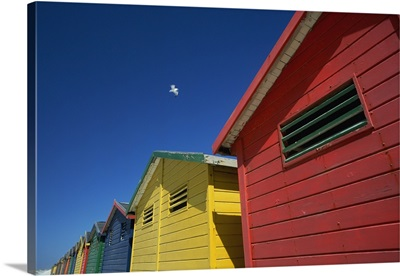 Seagull Flying Over Colorful Beach Huts