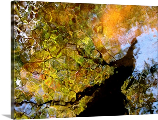 Second Earth Wall Art, Canvas Prints, Framed Prints, Wall Peels ...