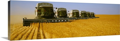 Six Gleaner combines harvest wheat in tandem