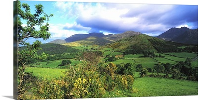 Slieve Bearnagh, Mourne Mountains, Co Down, Ireland