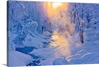 Small Stream In A Hoarfrost Covered Forest With Rays Of Sun, Alaska