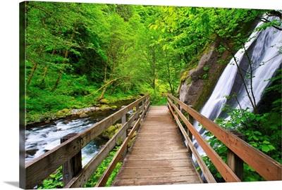 Small Waterfall Along Tanner Creek In Columbia River Gorge; Oregon, USA