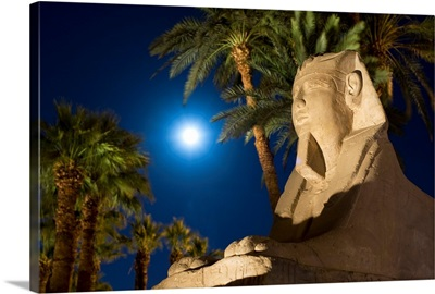 Sphinx And Date Palms With Full Moon Behind, Egypt