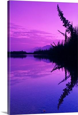 Spruce Trees & Mtns Reflect in John River Sunset AK/nBrooks Range Arctic Summer