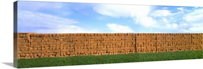 Stacks of alfalfa hay bales with alfalfa field in the foreground