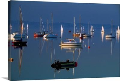 Strangford Lough, Co Down, Ireland; Sailboats On Still Water
