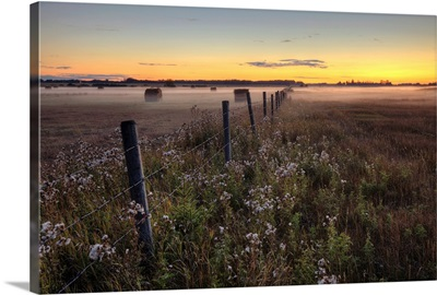 Summer Sunset Over Mist-Covered Pasture, Central Alberta, Canada