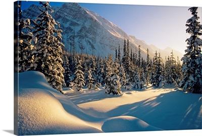 Sun Setting Behind Trees And Mountain, Banff National Park, Alberta, Canada